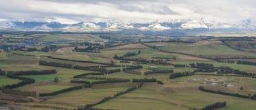 Panoramiczny widok Hedgerows Obraz Royalty Free