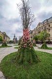 Panoramiczny widok historyczni budynki od zwycięstwo kwadrata - Timis Zdjęcia Stock