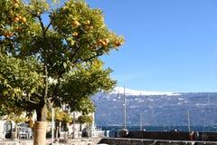 Panoramiczny widok Jeziorny Garda Brescia, Włochy na burzowym dniu - Zdjęcie Stock