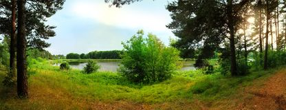 Panoramiczny widok jezioro w lesie Obrazy Royalty Free