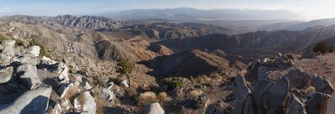 Panoramiczny widok Joshua Drzewa park narodowy obraz royalty free