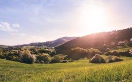 Panoramiczny widok krajobraz łąki i las pięknego wieczór gorący natury lato zmierzch bardzo Zdjęcie Royalty Free