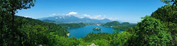 Panoramiczny widok Krwawiący jezioro, Slovenia panorama Fotografia Stock