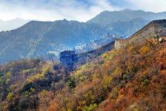 Panoramiczny widok Mutianyu sekcja wielki mur Chiny, otaczający zieloną i żółtą roślinnością pod a obrazy stock