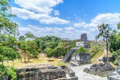 Panoramiczny widok nad majowie świątyniami w parku narodowym Tikal w Gwatemala i ostrosłupami Obrazy Stock
