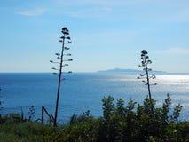 Panoramiczny widok nad przylądkiem Sounion, Attica, Grecja Zdjęcie Royalty Free
