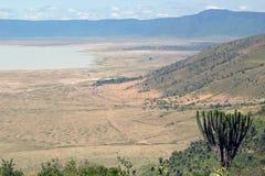 Panoramiczny widok Ngorongoro park Fotografia Royalty Free