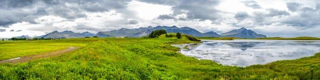 Panoramiczny widok piękny łąki pole trawa n i kwiaty obraz royalty free