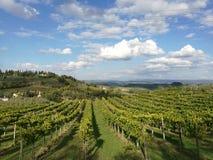 Panoramiczny widok przy Tuscany polami zdjęcia royalty free