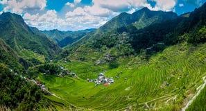 Panoramiczny widok ryżowi tarasy obrazy royalty free
