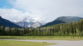 Panoramiczny widok sceniczny Robson sosny i góry las w lecie zdjęcia royalty free