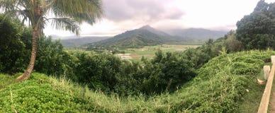 Panoramiczny widok Sceniczny widok górski na Dużej wyspie Hawaje Zdjęcia Stock