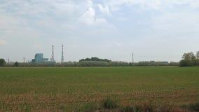 Panoramiczny widok spopielanie roślina za niektóre drzewami i maczkami zbiory wideo
