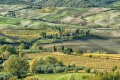 Panoramiczny widok Val Di Chiana, aluwialna dolina środkowy Włochy, Tuscany Obrazy Royalty Free