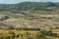 Panoramiczny widok Val Di Chiana, aluwialna dolina środkowy Włochy, Tuscany Zdjęcie Stock