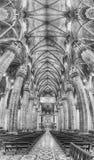Panoramiczny widok wśrodku gothic katedry Mediolan, Włochy Obraz Royalty Free