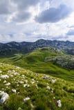 Panoramiczny widok w Durmitor, Montenegro region krasnodar halna droga Russia zdjęcia stock