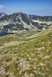 Panoramiczny widok w kierunku Vlahini jezior, Pirin góra Obraz Royalty Free