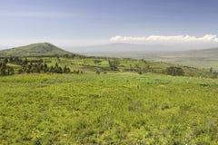 Panoramiczny widok Wielki rift valley w wiośnie po opady deszczu dużo, Kenja, Afryka Fotografia Royalty Free