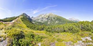 Panoramiczny widok Wysokie Tatras góry, Sistani Zdjęcie Stock