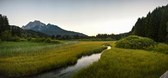 Panoramiczny widok Zelenci Naturalna rezerwa blisko Kranjska Gora, Slovenia zdjęcie royalty free