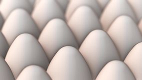 Panoraming video of white eggs stock video footage