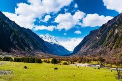 Panoramique de la montagne de quatre filles Image libre de droits