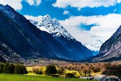 Panoramique de la montagne de quatre filles Photographie stock libre de droits