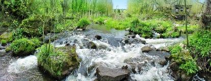 Panoramisch beeld van een mooie boswaterval royalty-vrije stock afbeeldingen