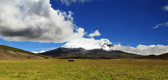Panoramisch beeld van Volcano Antisana (Ecuador) Royalty-vrije Stock Foto