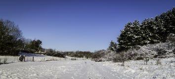 Panoramisch de winterlandschap stock foto