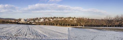 Panoramisch de winterlandschap in Slechte Soden, Duitsland met sneeuwinham stock foto's