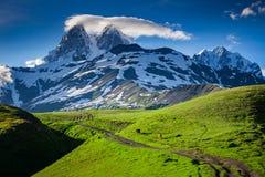 Panoramisch de zomerlandschap met Ushba-berg sneeuwpiek stock foto's