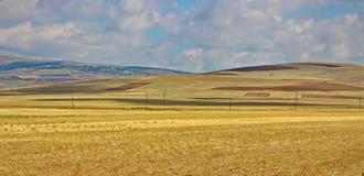 Panoramisch die schot van de steppen van Gobustan in de zomer wordt gemaakt Stock Foto