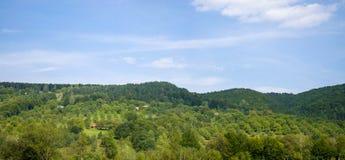 Panoramisch dorp in het hout stock foto's