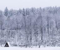 Panoramisch huis en sneeuwval in de Karpaten stock foto