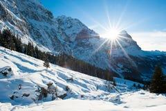 Panoramisch landschap boven Grindelwald stock afbeelding