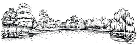 Panoramisch landschap met bos en meer, vectorhand getrokken illustratie Stock Afbeelding