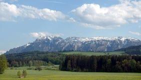 Panoramisch landschap met tot bloei komende alpiene weiden met groen gras en bergen met sneeuwkappen bij ver weg royalty-vrije stock afbeelding
