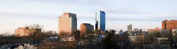Panoramisch Lexington Royalty-vrije Stock Afbeeldingen