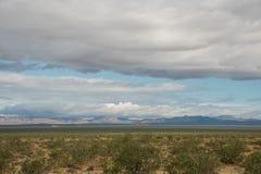 Panoramisch Mojave-woestijnuitzicht in de lente na de regen stock foto
