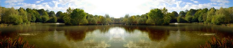 Panoramisch Surrey Royalty-vrije Stock Afbeelding
