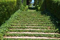 Panoramisch tuin en park Royalty-vrije Stock Afbeeldingen