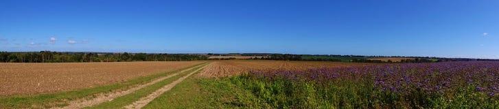 Panoramisch van Gebieden Royalty-vrije Stock Foto's