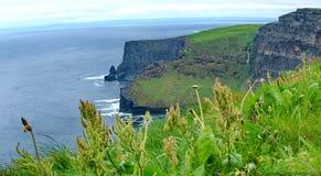 Panoramisch van Klippen van Moher stock afbeelding