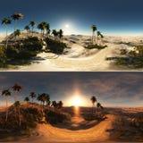 Panoramisch van palmen in woestijn gemaakt met 360 graad lense Royalty-vrije Stock Fotografie