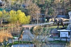 Panoramisch vom Safari-Park Lizenzfreies Stockfoto