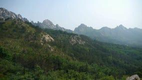 Panoramisch von den Bergen u. vom Hügel, Wind, der Kiefer rüttelt stock video footage
