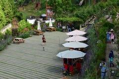 Panoramisch von der Gartenblume Bandung Indonesien stockfoto