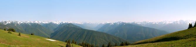 Panoramische Ansicht des Hurrikans Ridge stockfotos